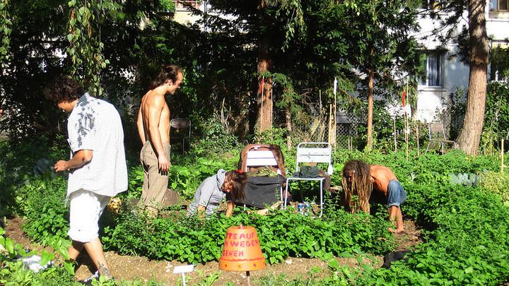 Urban AgriCulture Basela