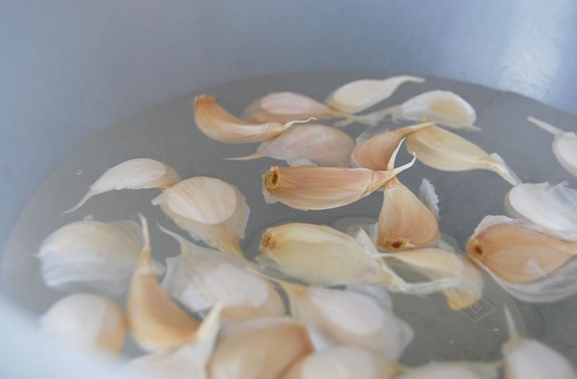namáčanie cesnaku vo vode