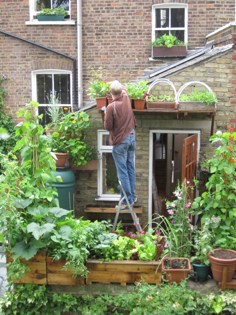 vertical veg blog